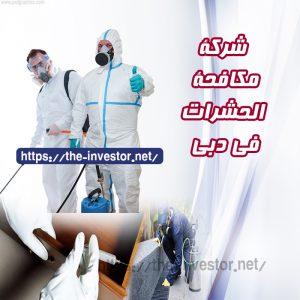 شركة مكافحة حشرات دبي 0502765910
