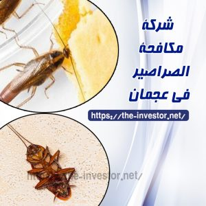 شركة مكافحة الصراصير عجمان  0553689103