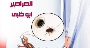 شركة مكافحة الصراصير في ابو ظبي