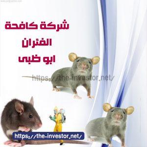 شركة مكافحة الفئران أبو ظبي 0504019051