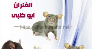 شركة مكافحة الفئران أبو ظبي