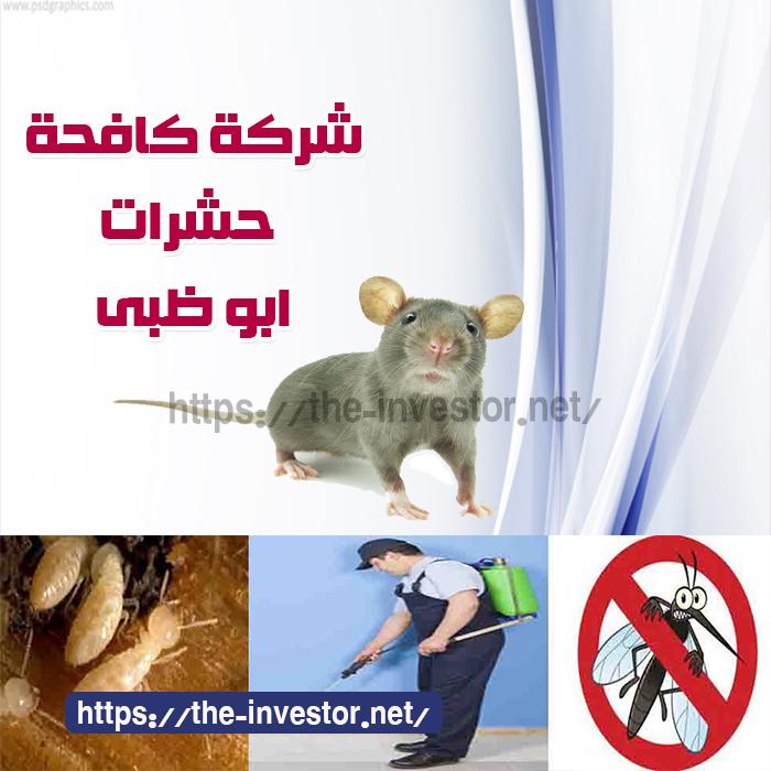 شركة مكافحة حشرات أبو ظبي